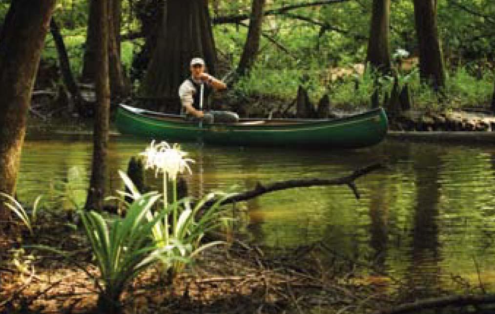 Paddling Alabama By Eric Beck, MD - becksworld